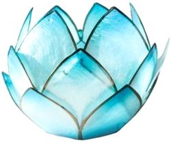 Lotus Crépuscule Turquoise